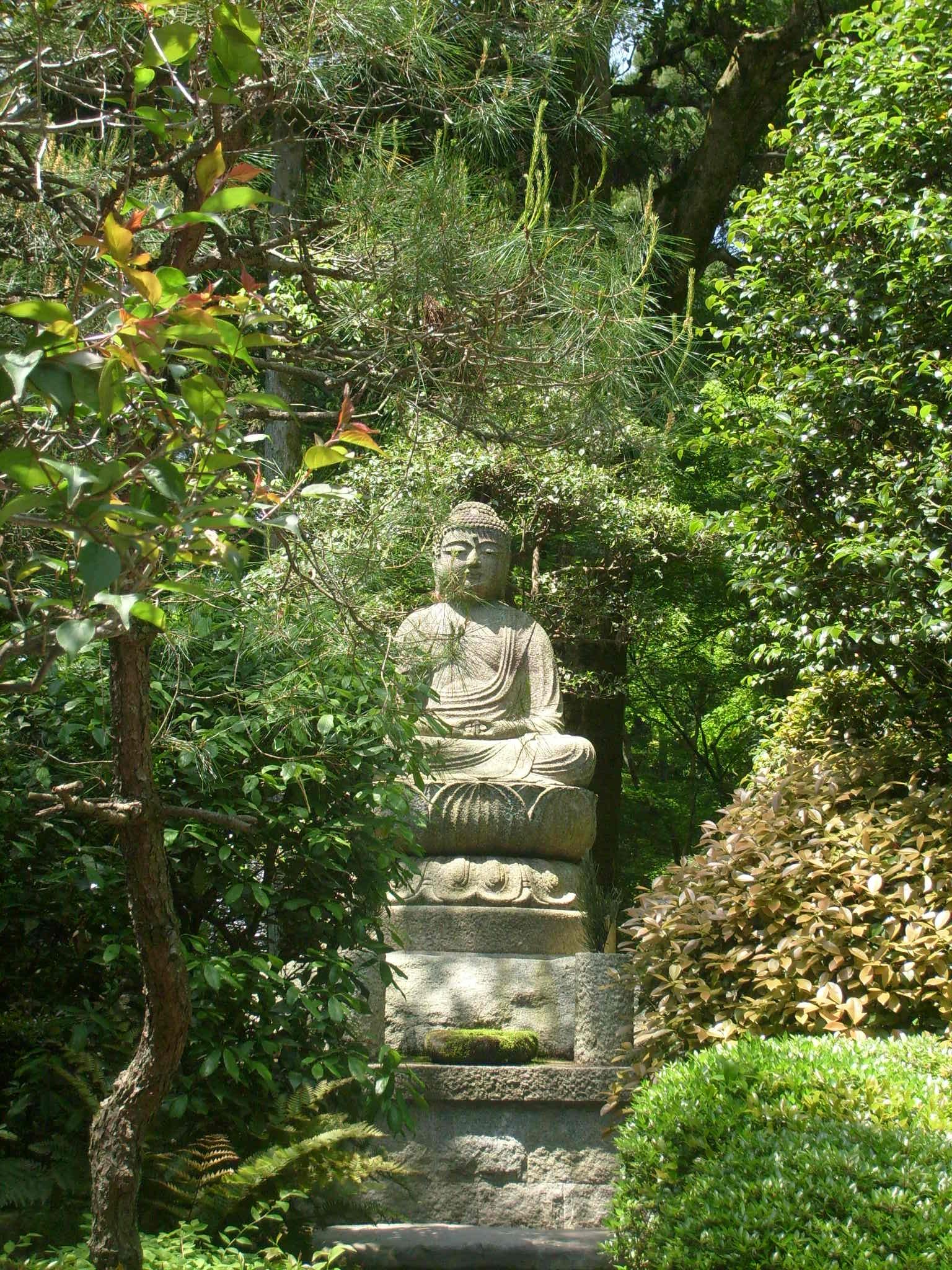 Luzycalor bouddha et jardin kyoto for Jardin kyoto