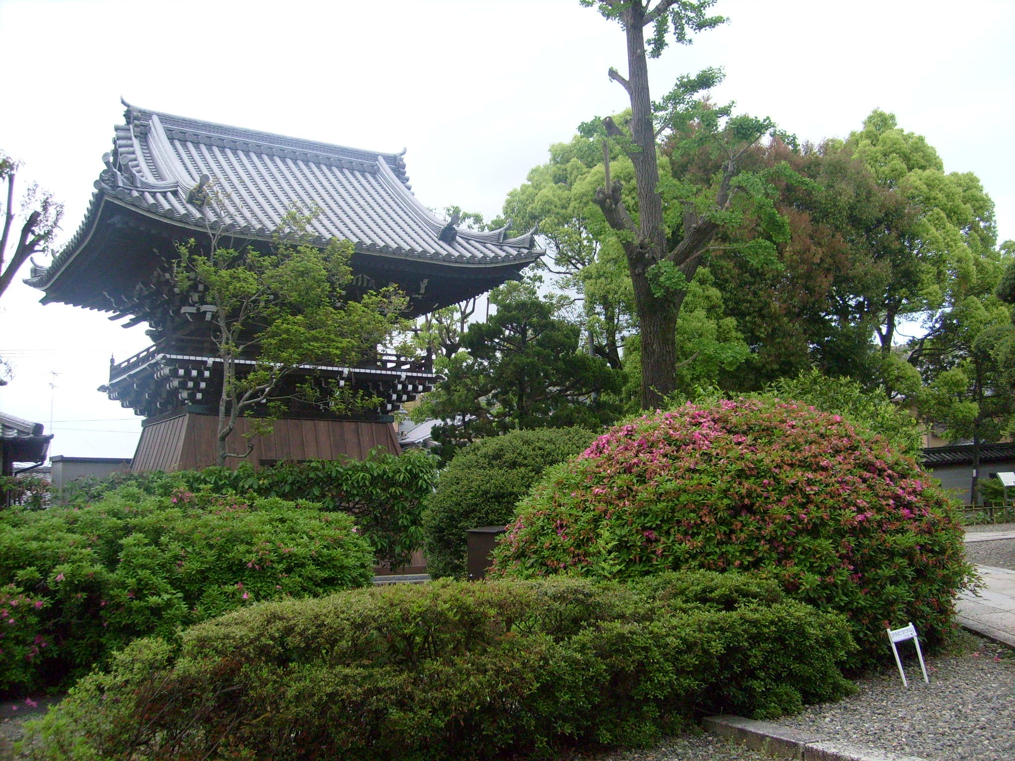 Luzycalor temple et jardin kyoto for Jardin kyoto