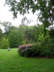 Jardin à l'anglaise à Fontainebleau