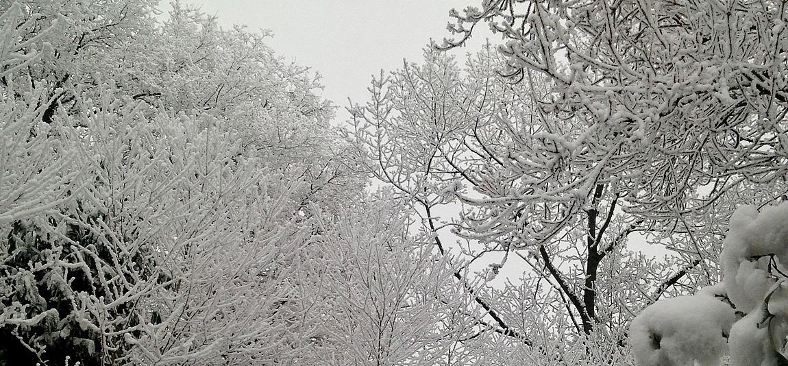 Photo neige