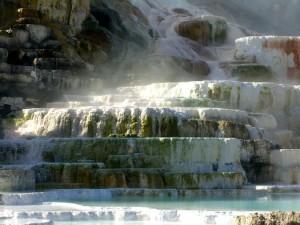 YellowStone et les sources chaudes de Mammoth - CP : Eliza Lagnier