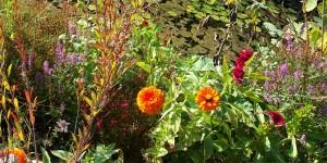 Jardin botanique de Marimurtra à Blanes